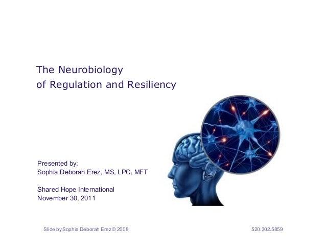 The Neurobiologyof Regulation and ResiliencyPresented by:Sophia Deborah Erez, MS, LPC, MFTShared Hope InternationalNovembe...