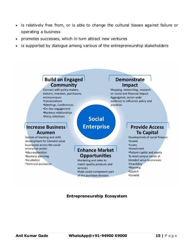 Template social enterprise development action plan in saarc countri academic or commercial organizations 15 flashek Gallery