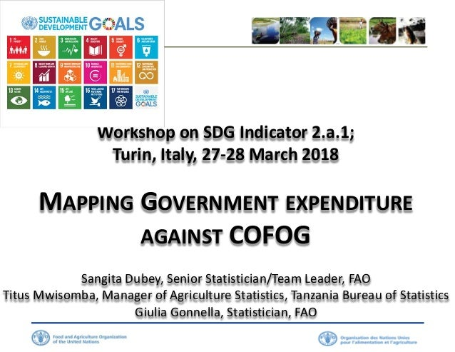 Workshop on SDG Indicator 2.a.1; Turin, Italy, 27-28 March 2018 MAPPING GOVERNMENT EXPENDITURE AGAINST COFOG Sangita Dubey...