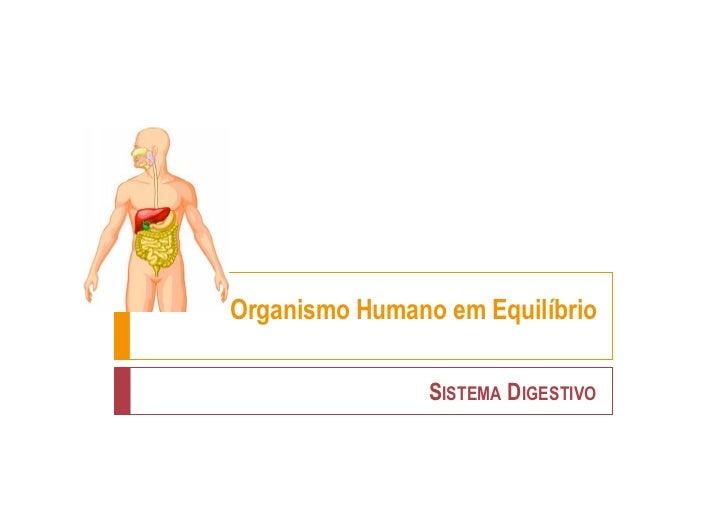 Organismo Humano em Equilíbrio                SISTEMA DIGESTIVO