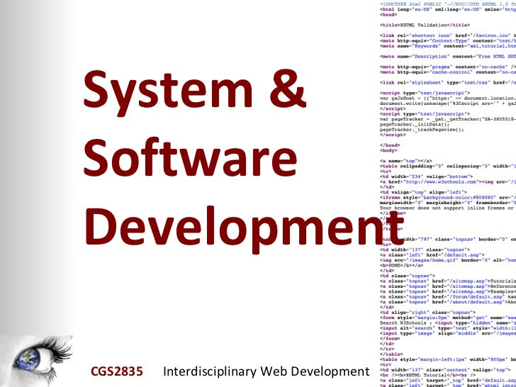 System & Software Development