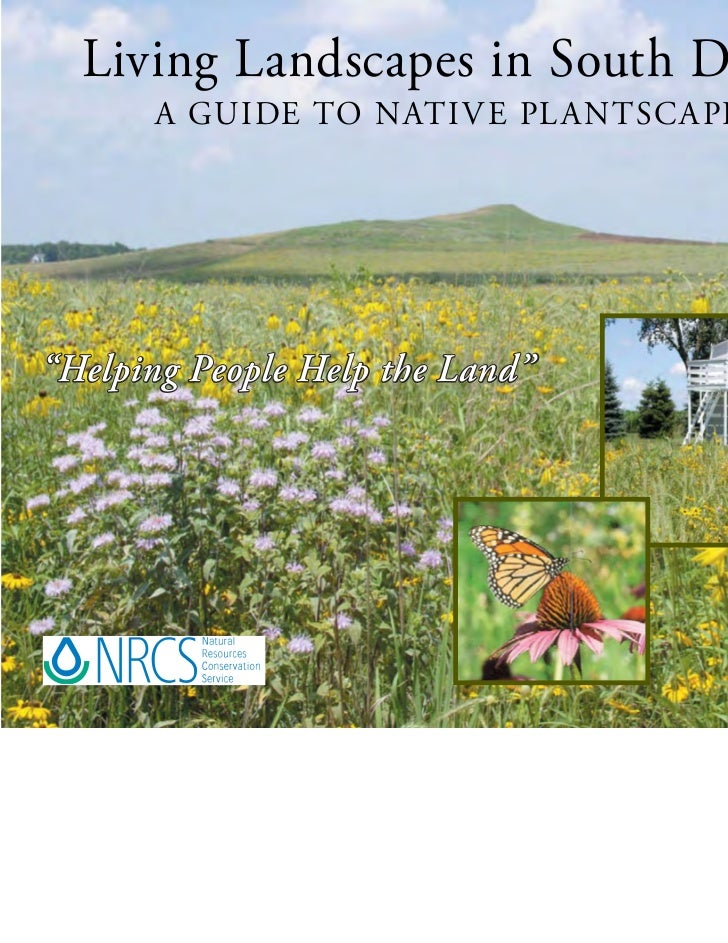 """Living Landscapes in South Dakota:       A GUIDE TO NATI V E PL A NTSC A PING""""Helping Peopl e Help the Land""""         Peopl..."""
