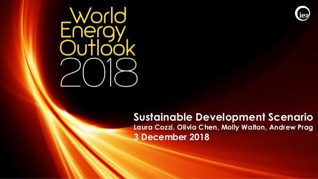© OECD/IEA 2018 Sustainable Development Scenario Laura Cozzi, Olivia Chen, Molly Walton, Andrew Prag 3 December 2018