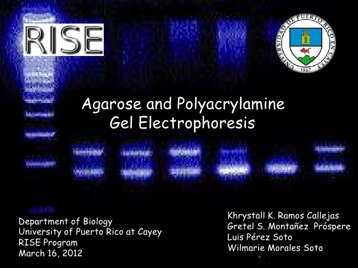 Agarose and Polyacrylamine                 Gel Electrophoresis                                     Khrystall K. Ramos Call...