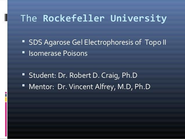 The Rockefeller University  SDS Agarose Gel Electrophoresis of Topo II  Isomerase Poisons  Student: Dr. Robert D. Craig...