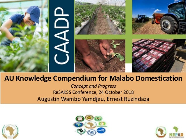 AU Knowledge Compendium for Malabo Domestication Concept and Progress ReSAKSS Conference, 24 October 2018 Augustin Wambo Y...
