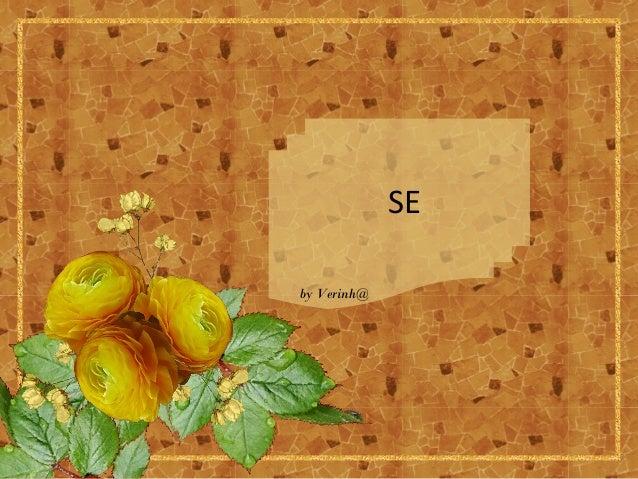 SE by Verinh@