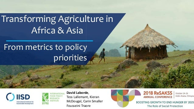 Transforming Agriculture in Africa & Asia From metrics to policy priorities David Laborde, Tess Lallemant, Kieran McDougal...