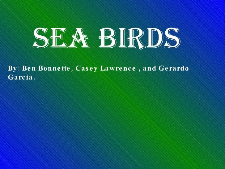 Sea Birds By: Ben Bonnette, Casey Lawrence , and Gerardo Garcia.