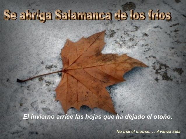 El invierno arrice las hojas que ha dejado el otoño. No use el mouse….. Avanza sóla