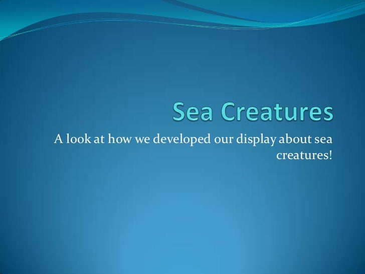 Sea Creatures<br />A look at how we developed our display about sea creatures!<br />