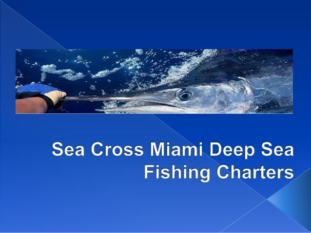 Miami florida deep sea fishing charter for Miami fishing charter