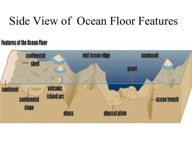 features of the ocean floor diagram thefloors co. Black Bedroom Furniture Sets. Home Design Ideas