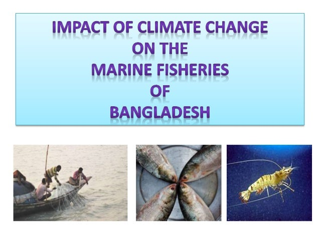 impact of climate change in bangladesh pdf