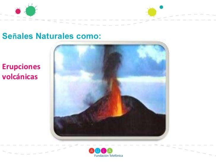 Se ales naturales y artificiales - Ambientadores naturales para la casa ...