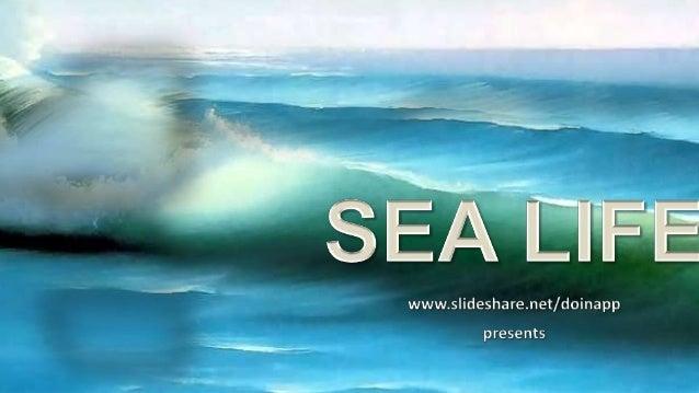www.slideshare.net/doinapp