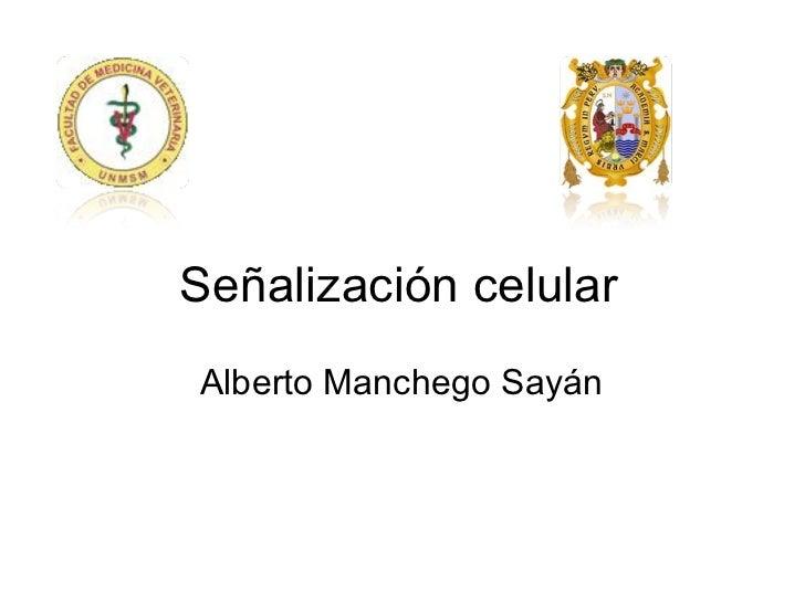 Señalización celular Alberto Manchego Sayán