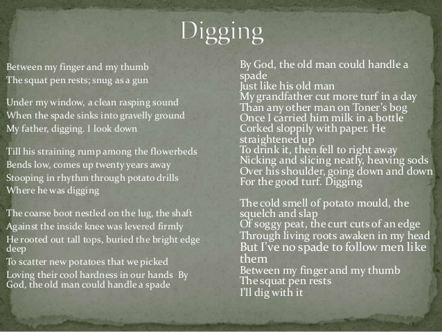 digging by seamus heaney an analysis Digging, by seamus heaney is a poem about a young man who gets  the poet  introduces the theme of time where the reader is provided with.