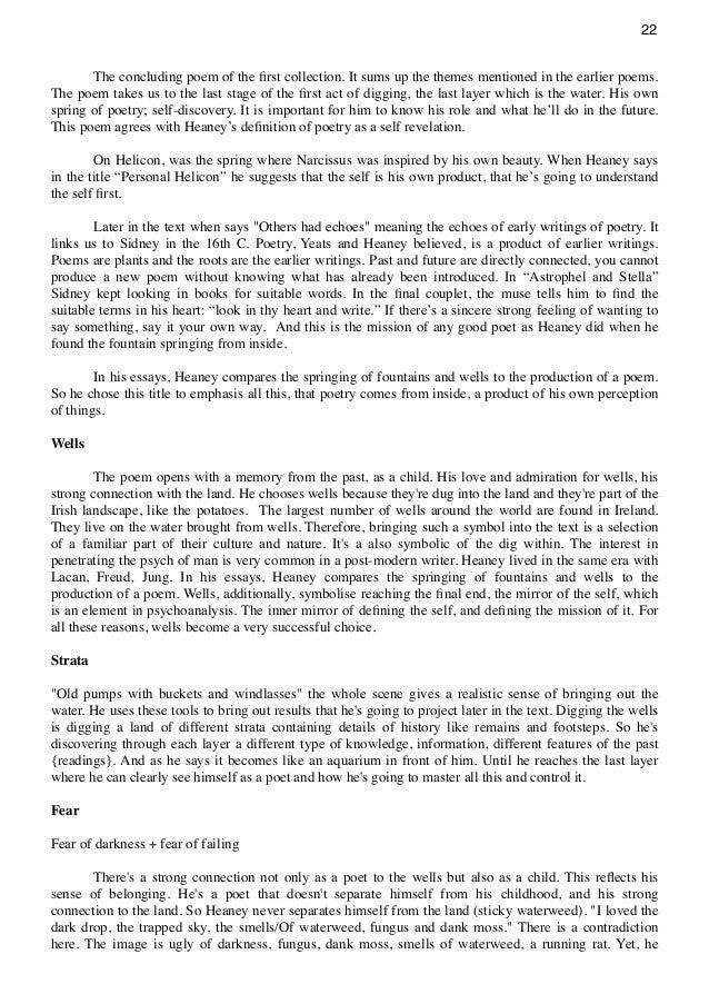 Essay Dichotomy in Seamus Heaney's Poetry