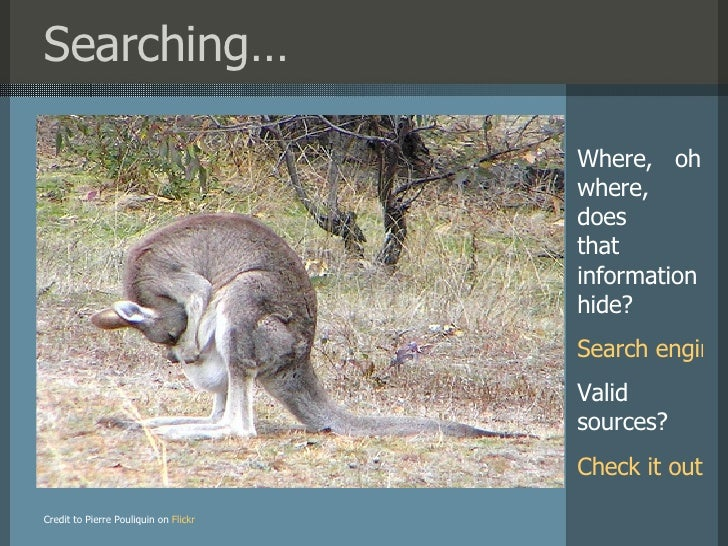 Searching… Credit to Pierre Pouliquin on   Flickr Where,  oh where, does  that information hide? Search engines Valid sour...