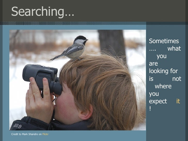 Searching… Credit to Mark Shandro on   Flickr Sometimes….  what  you  are  looking for is  not  where  you  expect  it !