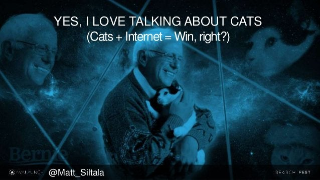 YES, I LOVE TALKING ABOUT CATS (Cats + Internet = Win, right?) @Matt_Siltala