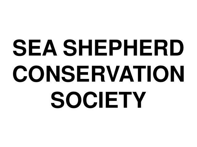 the sea shepherd conservation society Sea shepherd is the world's leading direct-action ocean conservation organisation search donate donate one sea shepherd australia's managing director jeff.