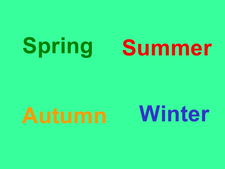 <ul><li>Spring </li></ul>Winter Autumn Summer