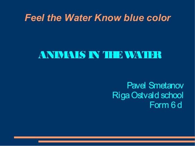 Feel the Water Know blue color  ANIM S IN T E W E AL H AT R Pavel Smetanov Riga Ostvald school Form 6 d