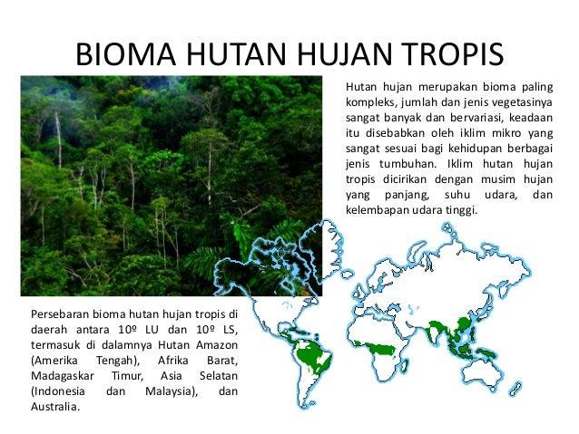 Persebaran Flora dan Fauna