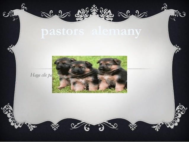 pastors alemanyHaga clic para modificar el estilo de subtítulo del patrón