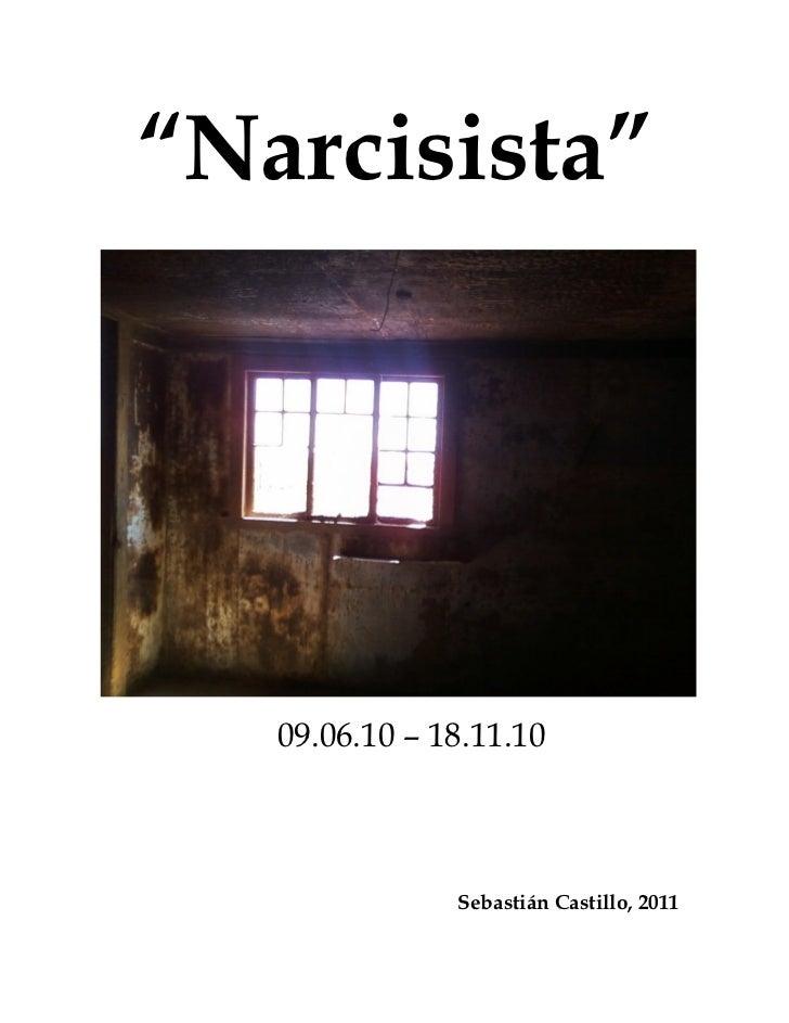 """""""Narcisista""""   09.06.10 – 18.11.10               Sebastián Castillo, 2011"""