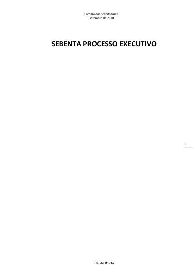 CâmaradosSolicitadores Dezembrode2010 ClaúdiaBoloto 1 SEBENTAPROCESSOEXECUTIVO