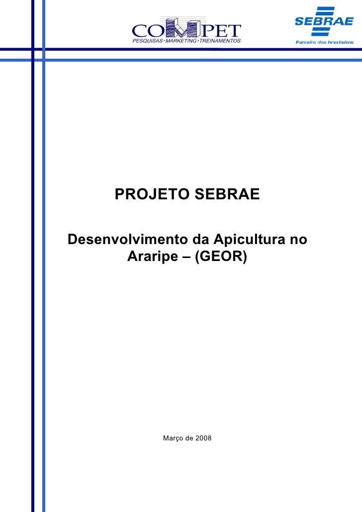 PROJETO SEBRAE  Desenvolvimento da Apicultura no        Araripe – (GEOR)                 Março de 2008