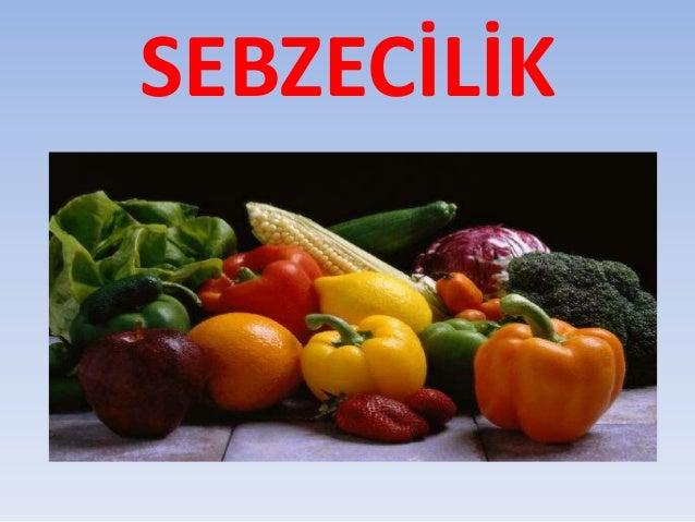 SEBZECİLİK