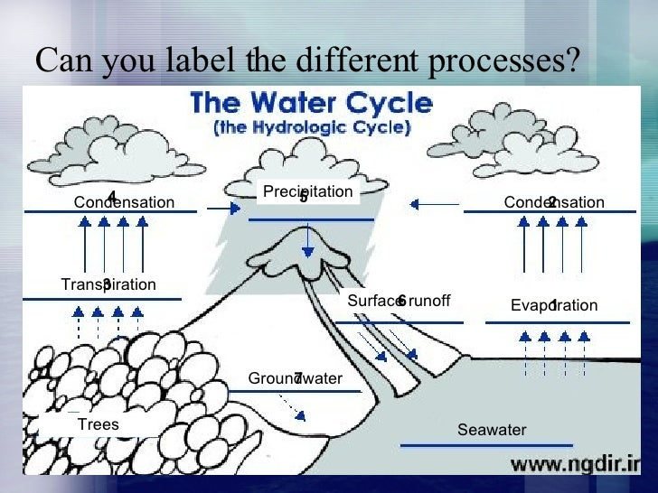 4 Can You Label The Different Processes Seawater Evaporation Condensation Precipitation Transpiration Surface Runoff