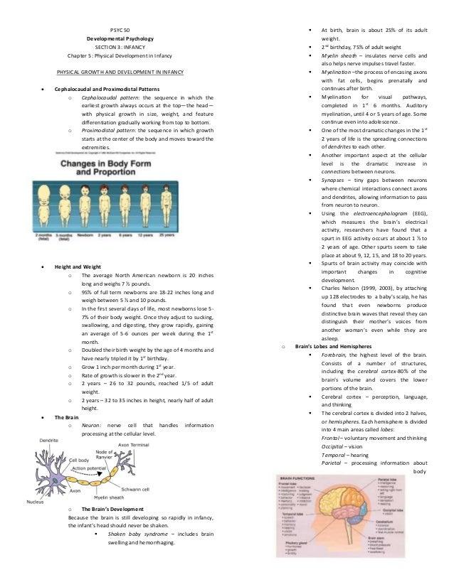 PSYC 50 Developmental Psychology SECTION 3: INFANCY Chapter 5: Physical Development in Infancy PHYSICAL GROWTH AND DEVELOP...