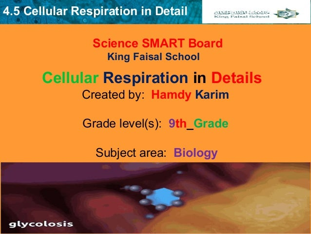 4.5 Cellular Respiration in Detail Science SMART Board King Faisal School Created by: Hamdy Karim  Grade level(s): 9th_Gra...