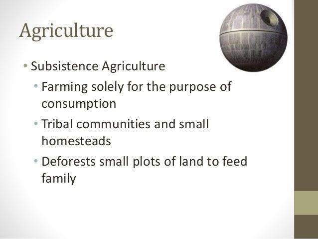 Sec 1 geog unit 3 lesson 4 - Profitable crops small plots ...