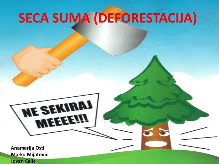 SECA SUMA (DEFORESTACIJA)<br />Anamarija Osti<br />Marko Mijatovic<br />Jovan Calic<br />