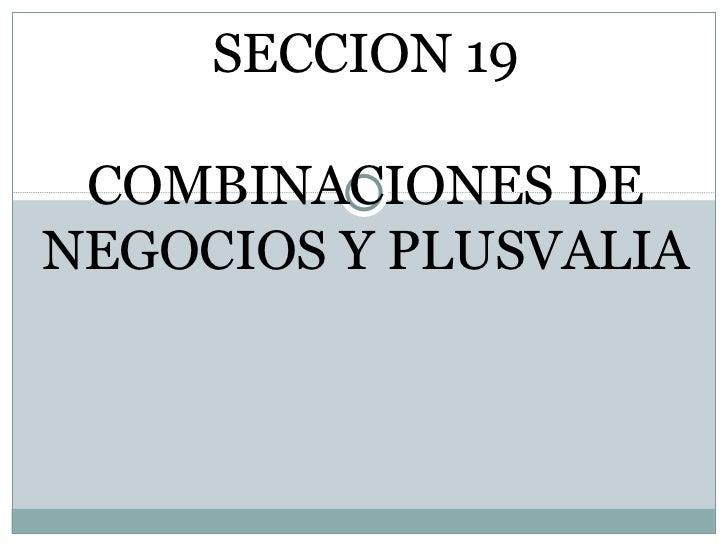 SECCION 19 COMBINACIONES DE NEGOCIOS Y PLUSVALIA