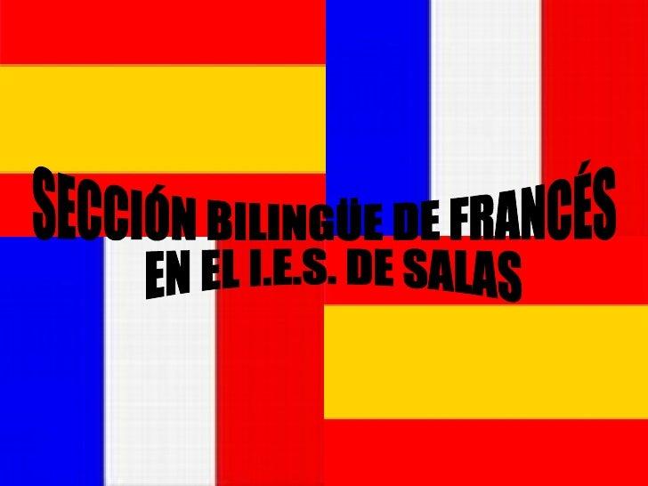 SECCIÓN BILINGÜE DE FRANCÉS EN EL I.E.S. DE SALAS