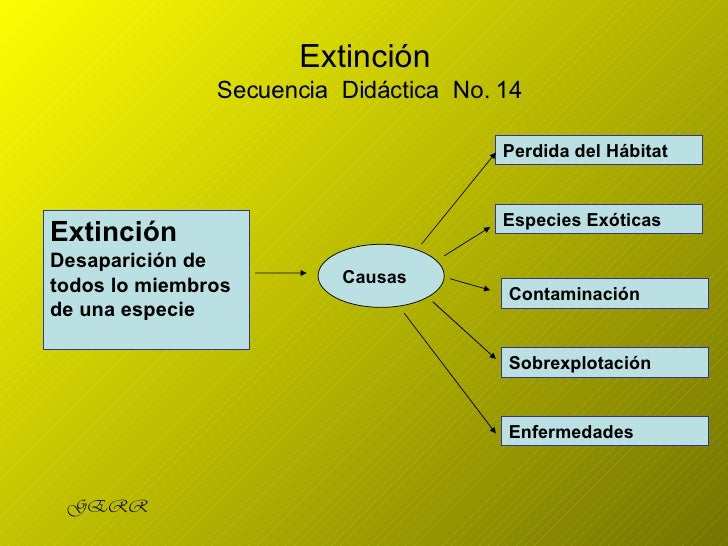 Extinción  Secuencia  Didáctica  No. 14 Extinción  Desaparición de todos lo miembros de una especie Causas Perdida   del  ...