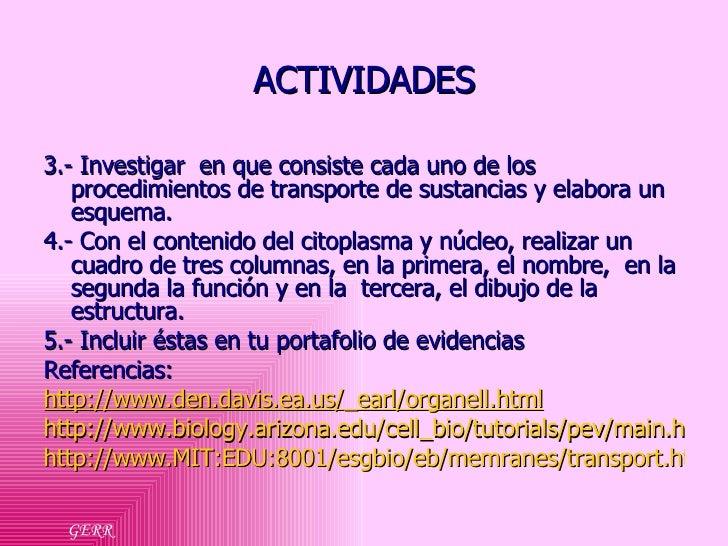 ACTIVIDADES <ul><li>3.- Investigar  en que consiste cada uno de los procedimientos de transporte de sustancias y elabora u...
