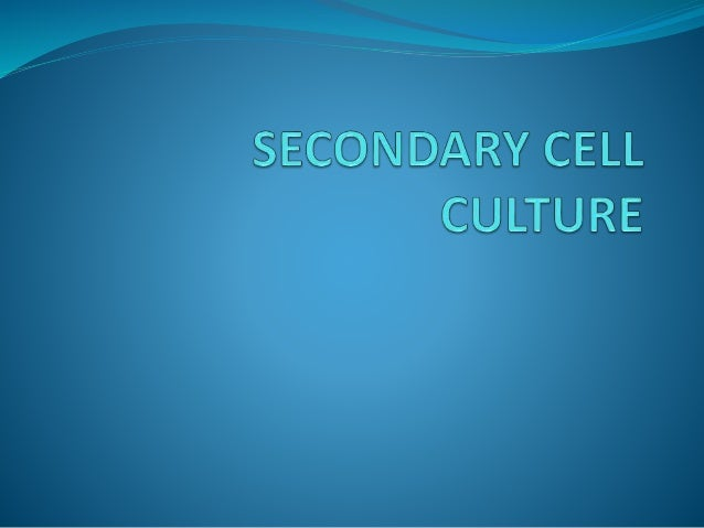 Secondary cell cultures  When a primary culture is sub-cultured, it becomes secondary culture or cell line. Subculture (o...