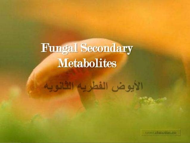 Fungal Secondary Metabolites