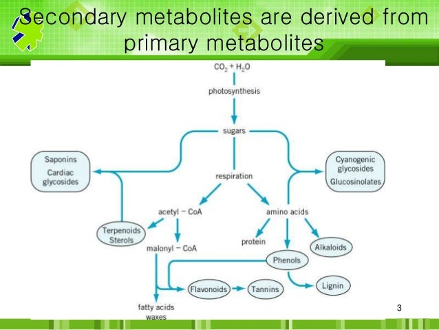 (PDF) Elucidation of Biosynthetic Pathways of Natural Products