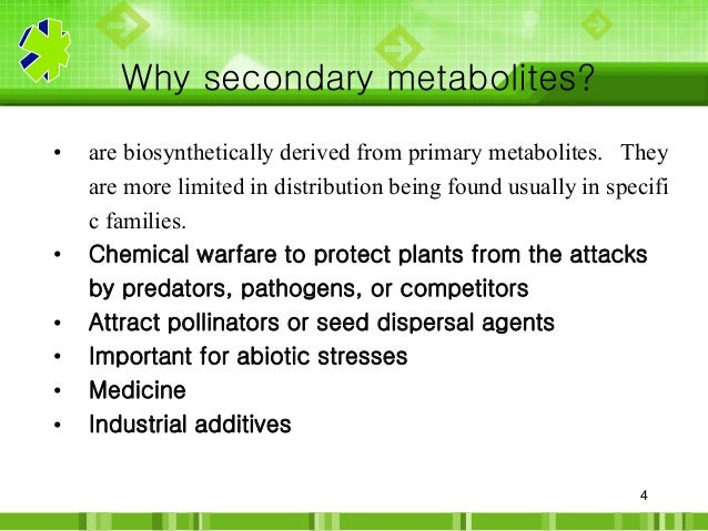 research papers on secondary metabolites Isolation of microbial endophytes from some ethnomedicinal plants of jammu and kashmir they stimulate the production of secondary metabolites with a diverse range of biological activities plant material was then dried in between the folds of sterile filter papers (b.