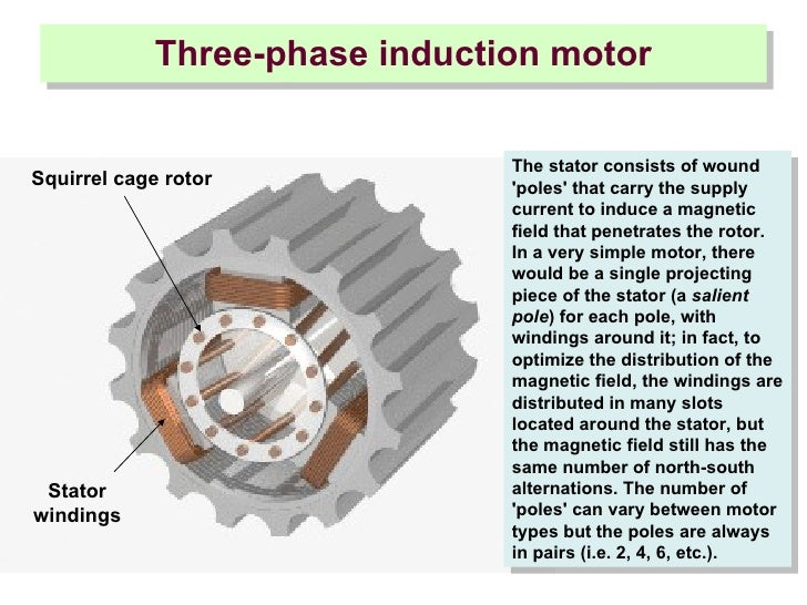 squirrel cage induction motor working principle pdf