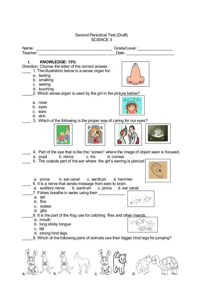 esl writing assessment task